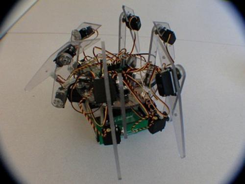 Μαθητές λυκείου δημιουργούν αραχνοειδές ρομπότ που αναγνωρίζει πρόσωπα